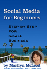 Vol 1: Social Media for Beginners+  Step by Step for Small Business by Marilyn McLeod