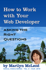 Vol 3:  How to Work with Your Web Developer: Asking the Right Questions by Marilyn McLeod